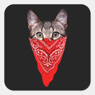 Gangsterkatze - Bandanakatze - Katzengruppe Quadratischer Aufkleber