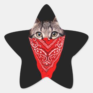 Gangsterkatze - Bandanakatze - Katzengruppe Stern-Aufkleber