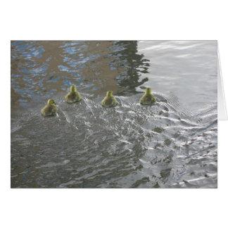 Gänschen auf dem Fluss Kennet, Lesung, Berkshire Karte