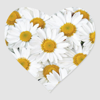 Gänseblümchen Herzaufkleber