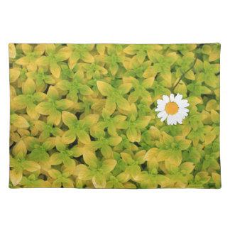 Gänseblümchen-Blume, die für den Sun erreicht Tischset