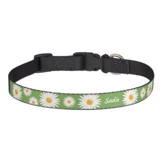 Gänseblümchen-Blumen auf Grün mit dem Namen des Haustierhalsband