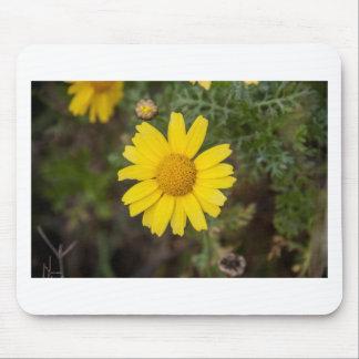 Gänseblümchen-Blumen-Cugelb Mousepad