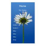 Gänseblümchen-Blumen-Geschäfts-Kartenvertikale Visitenkarten Vorlage