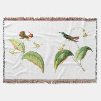 Gänseblümchen-Blumen-Kolibri-Vögelthrow-Decke Decke