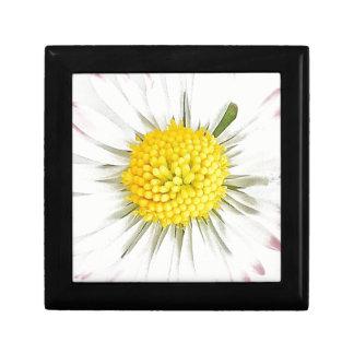 Gänseblümchen-Blumen-Schmuck/Geschenkboxen Erinnerungskiste
