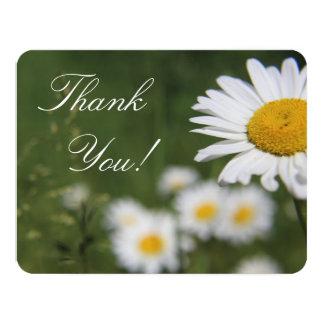 Gänseblümchen danken Ihnen zu kardieren Karte