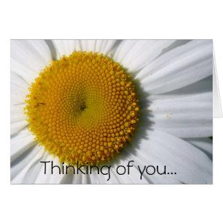 Gänseblümchen, das an Sie… denkt Karte