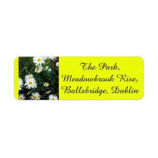 Gänseblümchen, das gelbe Rückversand-Adressaufkleber