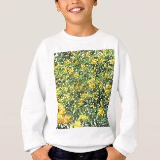 Gänseblümchen kann sweatshirt