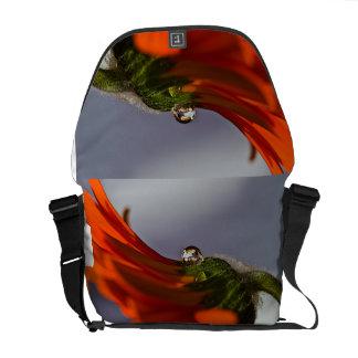 Gänseblümchen Kurier Taschen
