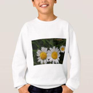 Gänseblümchen sagen nicht sweatshirt