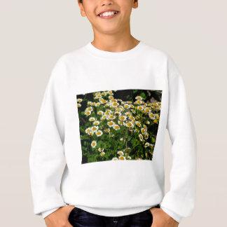 Gänseblümchen Sweatshirt