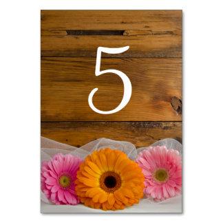 Gänseblümchen-Trio-Land-Wedding Tischnummern