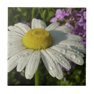 Gänseblümchen und Sommer-Flieder Keramikfliese