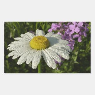 Gänseblümchen und Sommer-Flieder Rechteckiger Aufkleber