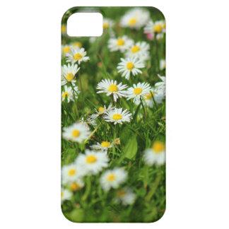 Gänseblümchen-Wiese iPhone 5 Schutzhüllen