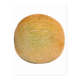 Ganze Kantalupen-Melone Postkarte