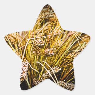 Garbe Weizen - danke Stern-Aufkleber