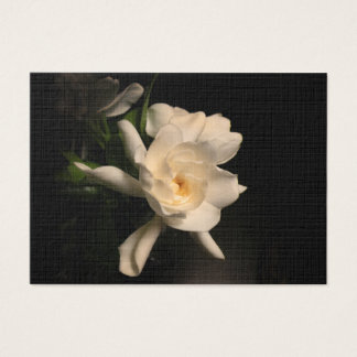 Gardenia-Blüte Visitenkarte