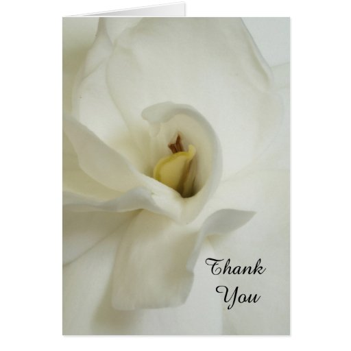 Gardenia-Trauerfall-Beileid danken Ihnen zu kardie Karten