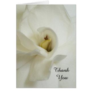 Gardenia-Trauerfall-Beileid danken Ihnen zu Karte