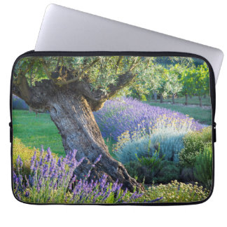 Garten landschaftlich mit Blumen, Frankreich Laptop Sleeve