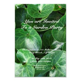 Garten-Party-wilder Ingwer-glattes Blätter-nahes Karte
