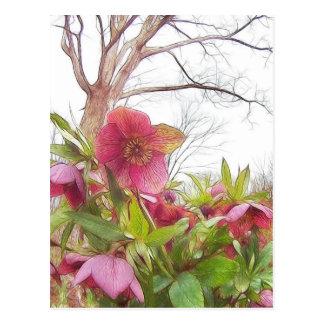 Garten-Szene - Hellebores und alte Eiche Postkarte