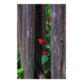 Garten-Zaun Briefpapier