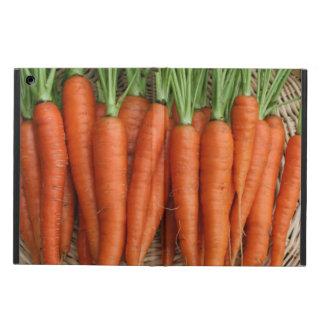 Gartenfrische Heirloom-Karotten