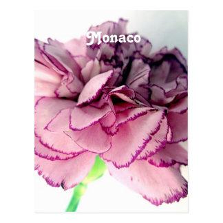 Gartennelken in Monaco Postkarten