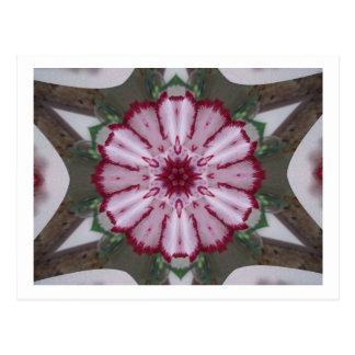 Gartennelken-Kaleidoskop Postkarten