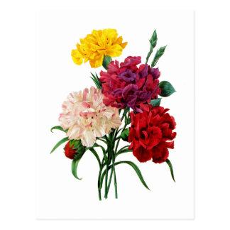 Gartennelken-und Ringelblumen-Blumenstrauß durch Postkarte