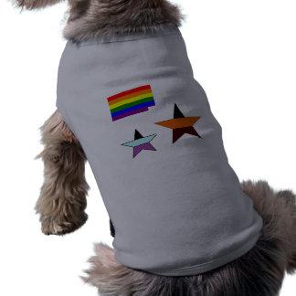 gay-pride-flag-738850, vvv, Stern Top