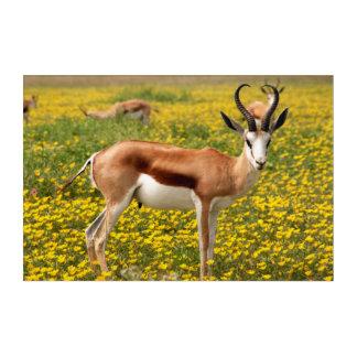 Gazelle in der Wiese Acryl Wandkunst