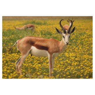Gazelle in der Wiese Holzposter