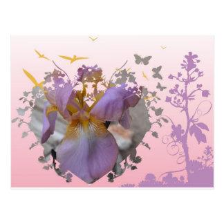 Geänderte rosa Iris Postkarte