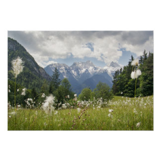 Gebirgslandschaftsplakat-Foto (verschiedene Poster