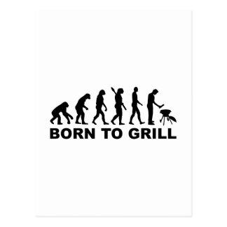 Geboren, Evolution zu grillen Postkarte