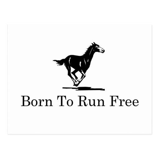 Geboren, frei zu laufen postkarte
