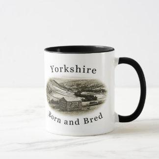 Geborene und gezüchtete Tasse Yorkshires