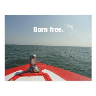 Geborenes freies postkarten