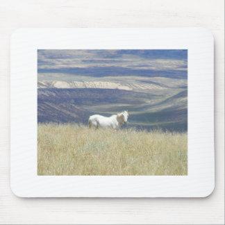 Geborenes freies wildes Mustang-Pferd Mousepad