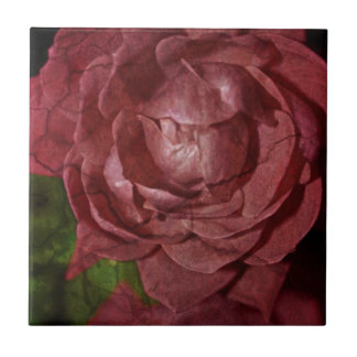 Gebrochene Rote Rose durch Shirley Taylor Keramikfliese