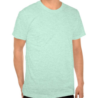 Geburtstag AQUA-SCHOKOLADE des amerikanischen Klas T-Shirts