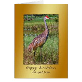 Geburtstag, Enkel, Sandhill Kran-Vogel Karte