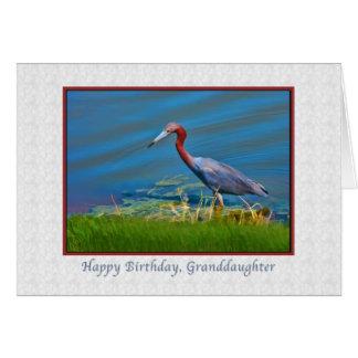 Geburtstag, Enkelin, kleines Blau-Reiher Karte