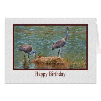 Geburtstag, Sandhill Kran-Familien-Karte Karte