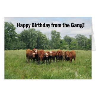 Geburtstag von der Gruppe Karten